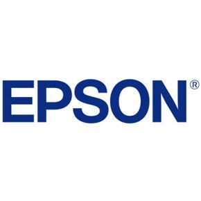 Epson T89070V 700ml Light Black UltraChrome® GS3 Ink Cartridge 4 Pack for S40600, S60600, S80600 Printers