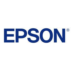 Epson Screen Positive Film