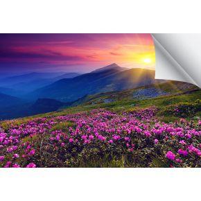 "Magic® Torino 17M Poly/Cotton Canvas 24"" x 50'"
